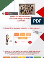 Interv Curriculo Por La Emergencia