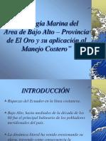 Geologia Marina Bajo Alto, El Oro