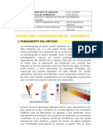 333292888 Extraccion e Identificacion de Colorantes Artificiales