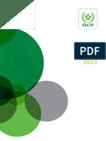 Rapport Activite ocp  2013 VF