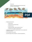causas de los sismos ULARE.docx