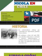 Vinicola en Chile