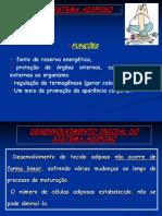 Aula 5_sistema Adiposo PDF