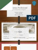 Presentación Práctica