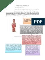 Evidencia Conceptualización y Clasificación de Alimentos