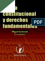 Teoria Constitucional y Derechos Fundamentales Miguel Carbonel