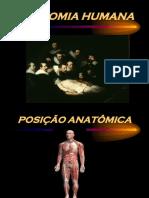 Introdução a Anatomia Básica e Sistema Locomotor
