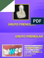grupo-premolar.pptx