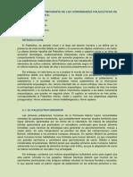 Tema 4.Paleoetnografía de Las Comunidades Paleolíticas de La Península Ibérica