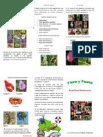 Flora y Fauna Brochure
