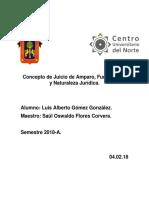 Concepto de Juicio de Amparo, Fundamento y Naturaleza Jurídica.