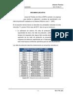 DLF-IT-024-17-CNPC