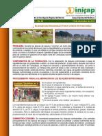 Bloques Nutricionales para Ovinos.pdf