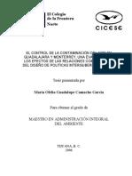 TESIS - Camacho García María Ofelia Guadalupe