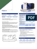 P33-3(4PP)ES(0813)
