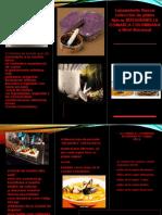 Brochure Restaurant Comarca