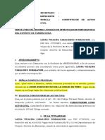 Solicitud de Constitucion Actor Civil