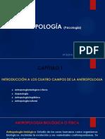 diapositivas antropología
