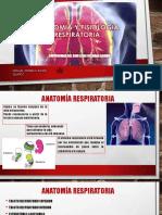 Anatomia y Fisiologia Respiratoria Final