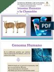 Clonación y Genetica Humana