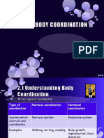 Body Coordination Chapter 2