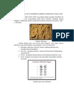 Klasifikasi Batuan Sedimen Karbonat Menurut Folk