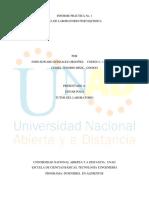 Informe Practica 1 Fisicoquimica (1)