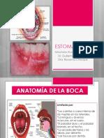 estomatitis-140820005612-phpapp02