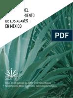 Panorama del aprovechamiento de los agaves en México