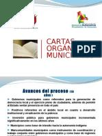 Visión de la Carta Orgánica Municipal