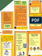 Leaflet Poli Mengenal Gangguan Jiwa-1