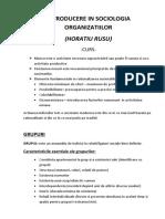 Introducere in Sociologia Organizatiilor