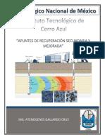 MANUAL DE RECUPERACION SECUNDARIA - OK.pdf