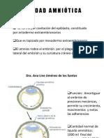 Placenta y Anexos Placentarios