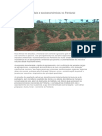 Impactos Ambientais e Socioeconômicos No Pantanal