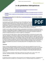 Manual de Cultivo de Pimientos Hidropónicos