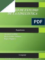 Objeto de Estudio de La Lingüística