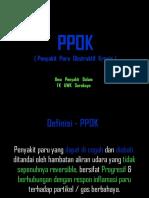 PPOK  UWKS   2011