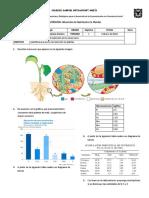 Actividad_4_Absorción de Nutrientes en Plantas