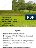 SDGs and Urban Agriculture