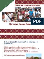 pueblosindigenasdelorienteboliviano-100906153655-phpapp02
