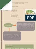Grupo 4 Conservacion Estructuras Especiales