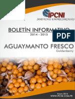 bol-aguaymanto.pdf