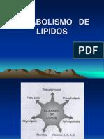 6571223 Metabolismo de Lipidos