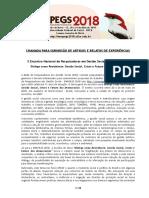 Portugues Chamadaartigos&Relatosenapegs2018