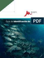 Guia_identificacion_peces.pdf