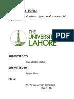 Biochem Assignment 1