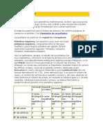 Material 3ero Basico Geometria