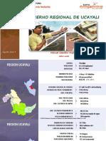 04 Ppt Proyectos Ucayali