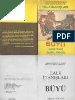 buyu.pdf